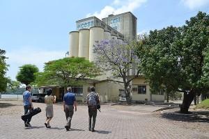 Os jornalistas pesquisam sobre a produção de alimentos no RS/Foto: Juliana Brum